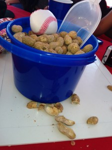 Baseball Party -Centerpieces -Peanuts in a Bucket on Rubber Bases